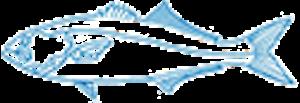 Blue Fish Capital