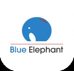 Blue Elephant Capital