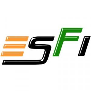 Esports Federation of India